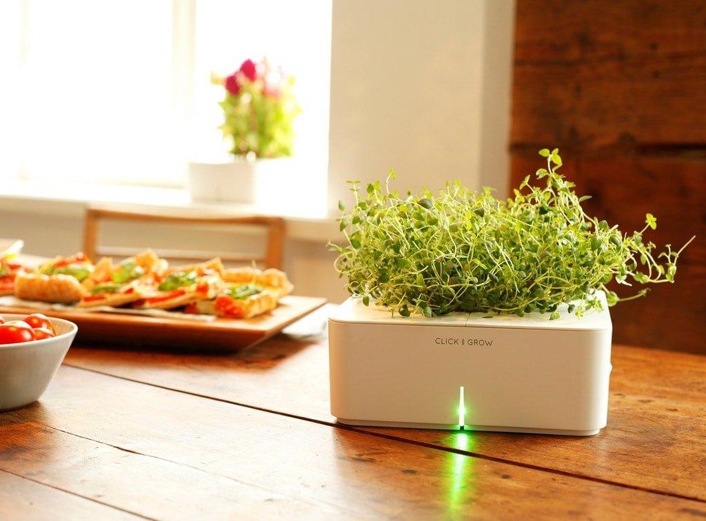 Набор «умных» картриджей для самостоятельного выращивания зелени и ягод «Click _ Grow»